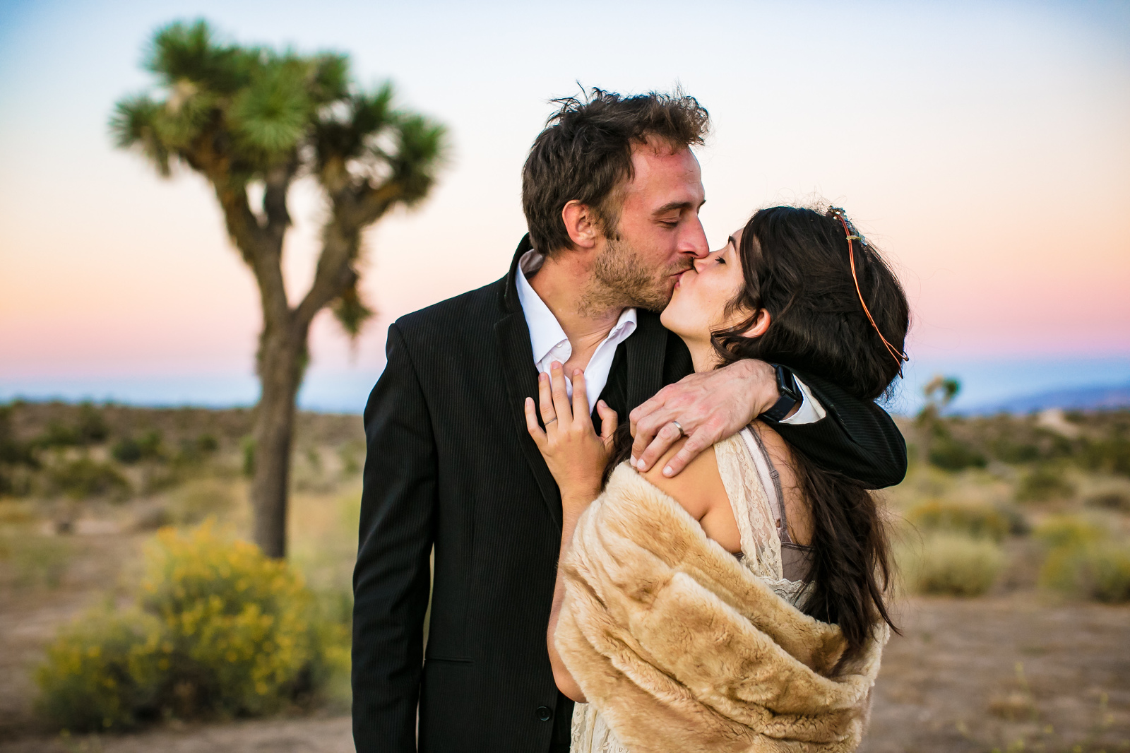 Elopement at sunset in front of a Joshua Tree.